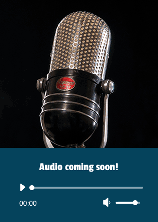 Audio coming soon for The Blue and Silver Shark